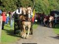 Attelage_Ardennais_Belges_route_Suisse_Normande_ville_3881