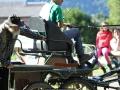 ATTELAGE_ARDENNAIS_BELGES_route_Suisse_Normande_jeux_ludiques_7662