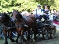 ATTELAGE_ARDENNAIS_BELGES_route_Suisse_Normande_jeux_ludiques_7957