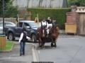 ATTELAGE_ARDENNAIS_BELGES_route_Suisse_Normande_routier_5469