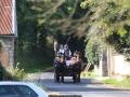 ATTELAGE_ARDENNAIS_BELGES_route_Suisse_Normande_routier_5545