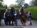 ATTELAGE_ARDENNAIS_BELGES_route_Suisse_Normande_routier_5567