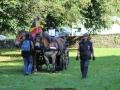 ATTELAGE_ARDENNAIS_BELGES_route_Suisse_Normande_routier_5637