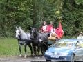 ATTELAGE_ARDENNAIS_BELGES_route_Suisse_Normande_routier_5677