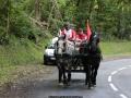 ATTELAGE_ARDENNAIS_BELGES_route_Suisse_Normande_routier_5682