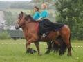 caval charline