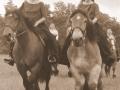 ilo caval 2