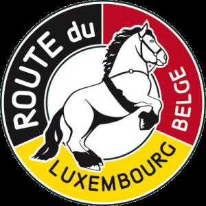 Logo-Routelux-pour-Web-400px-300x300