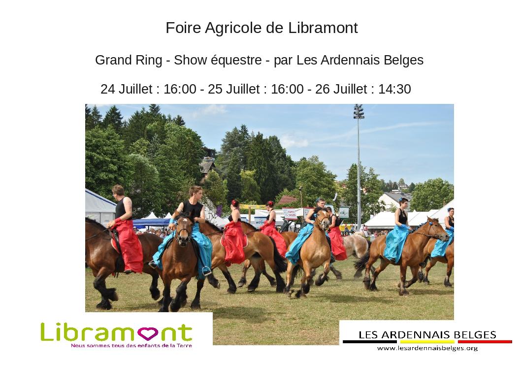 Show Equestre à la foire de Libramont 2015