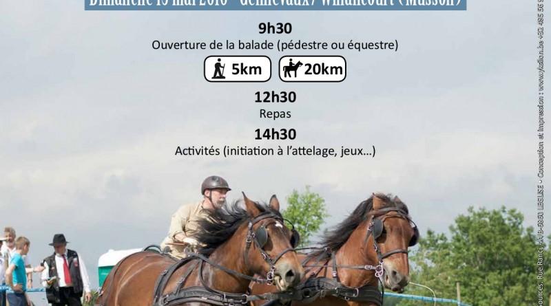 Balade Gourmande Gennevaux / Willancourt (Musson) - 15 Mai 2016